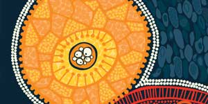 Overview of the Fifth National Aboriginal and Torres Strait Islander BBV and STI Strategy 2018-2022